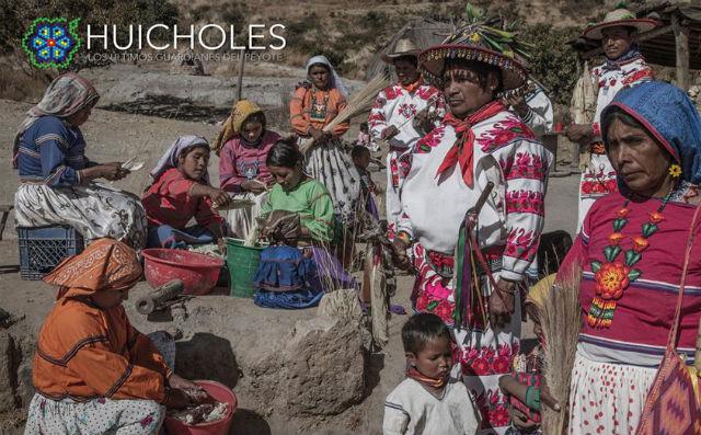 Grupo Etnico Huichol. Peyote