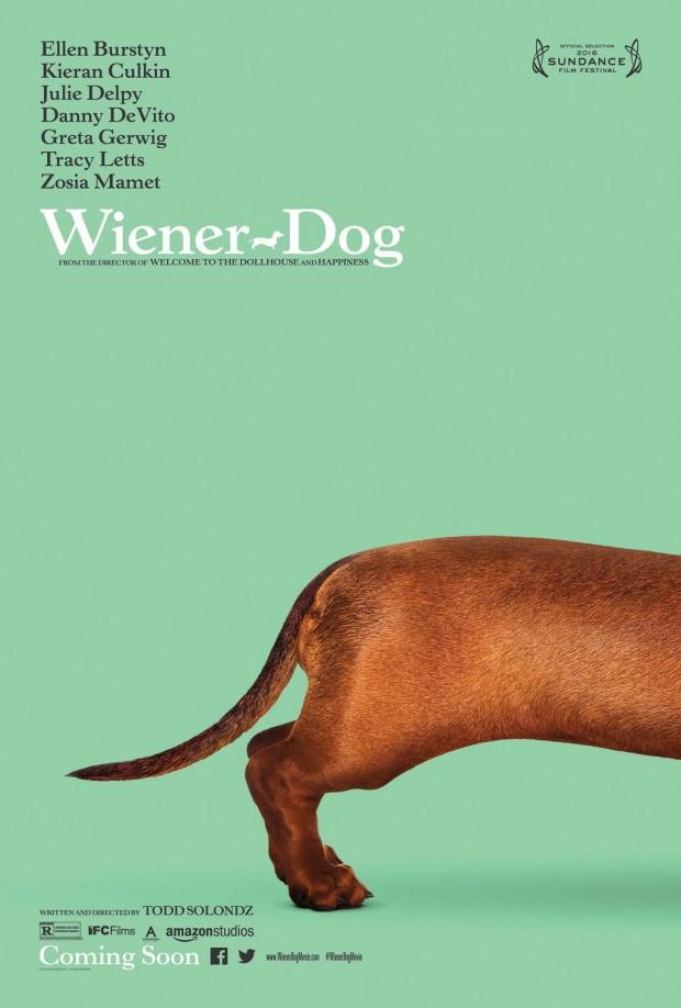 Wiener-Dog-620x918